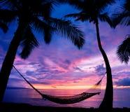Hamac de coucher du soleil Photos stock