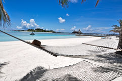 Hamac Maldives de plage Photographie stock libre de droits