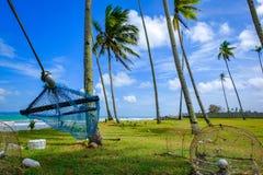 hamac sous l'arbre de noix de coco près de la plage avec le fond de ciel bleu au jour ensoleillé Image libre de droits