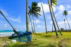 hamac sous l'arbre de noix de coco près de la plage avec le fond de ciel bleu au jour ensoleillé Images stock