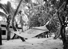 Hamaca en los árboles Imagen de archivo libre de regalías