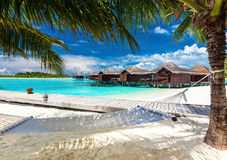 Hamaca entre las palmeras en la playa tropical Fotos de archivo