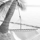 Hamaca pacífica de las vacaciones blanco y negro foto de archivo libre de regalías