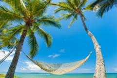 Hamaca tropical Fotos de archivo libres de regalías