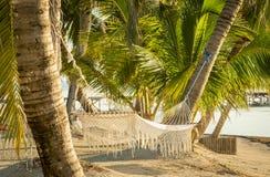 Hamaca tropical de la playa imagenes de archivo