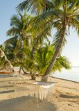 Hamaca tropical del día de fiesta imagenes de archivo