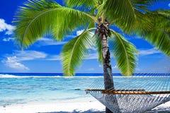 Hamaca vacía entre las palmeras Imagen de archivo libre de regalías