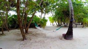 Hamaca vacía entre las palmeras en la playa tropical almacen de metraje de vídeo