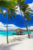 Hamaca vacía entre las palmeras en la playa tropical con el cielo azul Foto de archivo libre de regalías