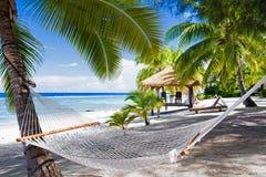 Hamaca vacía entre las palmeras en una playa Fotos de archivo libres de regalías