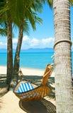 Hamaca vacía entre los árboles de palmas Foto de archivo
