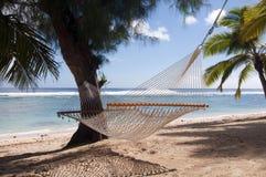 Hamaca y palmeras en una playa tropical Imagen de archivo
