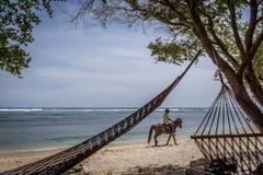 Hamacas negras en la playa y un jinete del caballo Foto de archivo libre de regalías