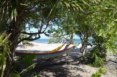 Hamacas por la playa Fotografía de archivo