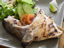 Hamachi Kama Grilled Royalty Free Stock Image