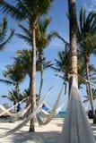 Hamacs op het strand Royalty-vrije Stock Afbeelding