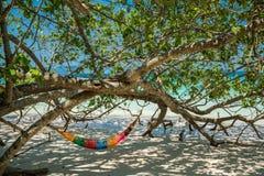 Hamak Drzewne patki wieszają nad plażą pod cienia dnia czasu wid Zdjęcia Royalty Free