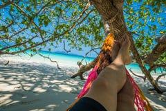 Hamak Drzewne patki wieszają nad plażą pod cienia dnia czasu wid Obrazy Royalty Free