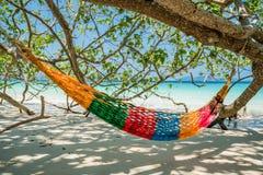 Hamak Drzewne patki wieszają nad plażą pod cienia dnia czasu wid Zdjęcie Stock