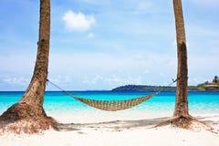 Hamak między drzewkami palmowymi Fotografia Stock