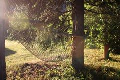 Hamak natury zieleń Obrazy Stock