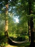 hamak ogródek Fotografia Stock