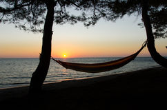 Hamak w zmierzchu przy plażą Obraz Royalty Free