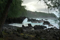 Hamakua Waves Stock Photo