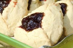 Hamantaschen. Jewish hamantaschen pastry filled with raspberry jam for the holiday of Purim Stock Images