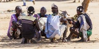 Hamar man på bymarknaden Turmi fäll ned omodalen ethiopia Royaltyfri Bild