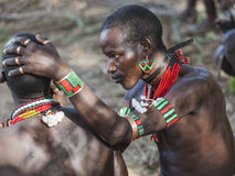 Hamar men paint each other's face in a preparation to a bull jumping ceremony. Turmi, Omo Valley, Ethiopia. Hamar men paint each other's face in a preparation Stock Photo