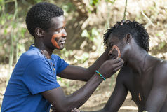 Hamar men paint each other's face in a preparation to a bull jumping. Turmi, Omo Valley, Ethiopia. Hamar men paint each other's face in a preparation to a bull Royalty Free Stock Photos