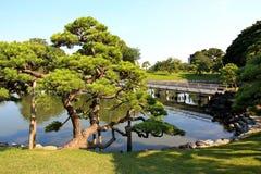Hamarikyu Gärten in Tokyo, Japan stockbilder