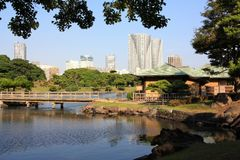 Hamarikyu Gardens in Japan Royalty Free Stock Image
