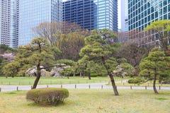 Hamarikyu Gardens Stock Photo