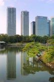 Hamarikyu Zen  garden. Very famous Hamarikyu Zen garden with tall Shiodome skyscrapers backward  in Tokyo Japan; focus on pine tree Royalty Free Stock Photo