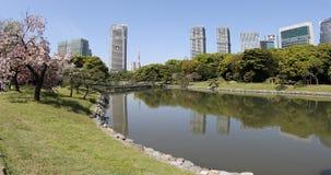 Hamarikyutuinen Tokyo stock video