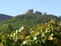 Hambach-Schloss Stockfotografie
