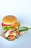 Hamberger met groentensalade Stock Afbeelding