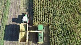 Hambourg, Allemagne - 4 septembre 2018 : Récolte de maïs, ramasseuse-hacheuse de maïs dans l'action, camion de récolte avec le tr banque de vidéos