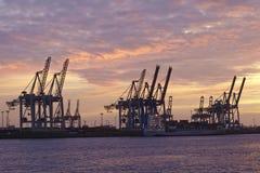 Hambourg - port au coucher du soleil avec des grues de portique de récipient Photographie stock libre de droits