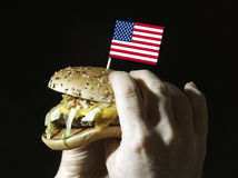 Hambruger with a flag Royalty Free Stock Photos