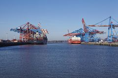 Hamburg (Germany) - Containerships at the Port Waltershof. The container vessels MSC New York and Cap San Antonio (Hamburg Sued) are loaded and unloaded at the Stock Image
