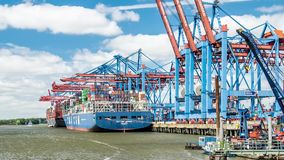 Hamburg , Germany - July 13 2017: Container gantry cranes of the terminal Burchardkai loading ships in the deepwater stock video