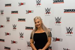 Impressions from the Red Carpet Event during the WWE Live Tour 2017, Hamburg, Germany Royalty Free Stock Image