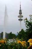 Hamburg, Heinrich-Hertz-Turm, Park near by the Center. The radio telecommunication tower at Hamburg, seen from the old botanic garden. 279 meters tall, it is Stock Photo