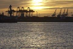 Hamburg - port av Hamburg på solnedgången Arkivbild