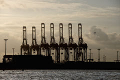 Hamburg port cranes. Hamburg port crane silhouette at sunset Royalty Free Stock Photo