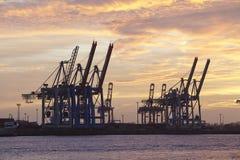 Hamburg - port przy zmierzchem z zbiornika kętnara żurawiami Zdjęcie Royalty Free