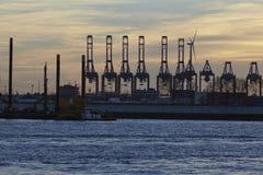 Hamburg - port przy zmierzchem z zbiornika kętnara żurawiami Zdjęcia Stock